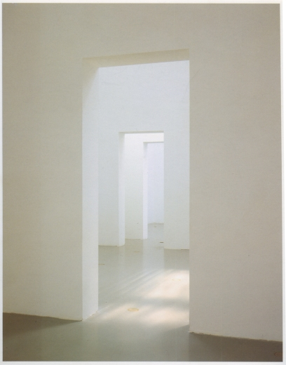 BruceNauman_DoubleDoors-ProjectionAndDisplacement_GuggenheimNY_1973-larger-corrected-blur